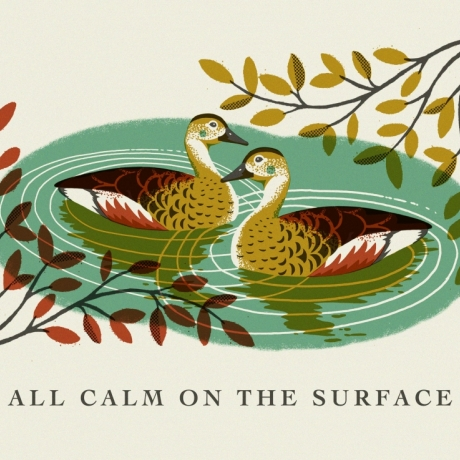 Tom Frost: All Calm on the Surface