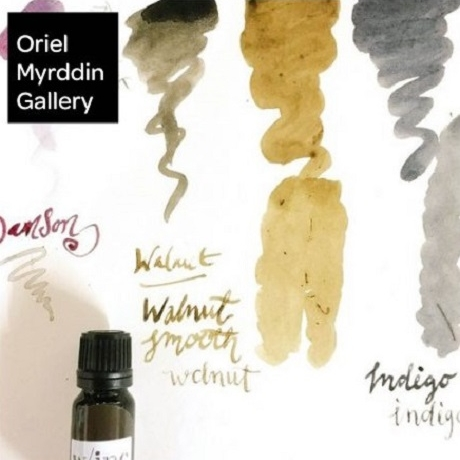 Botanic Inks Workshop at Oriel Myrddin Gallery
