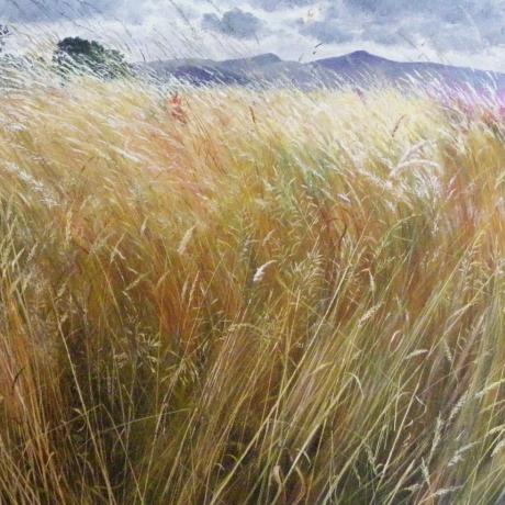 Encountering Beauty: A retrospective of paintings by Meg Stevens