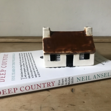 Oriel Myrddin Book Club - Deep Country: Neil Ansell