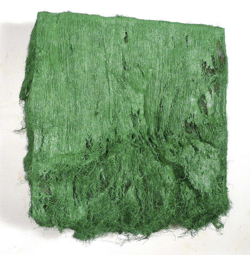 Green Nantyffin (2015), Paul Emmanuel